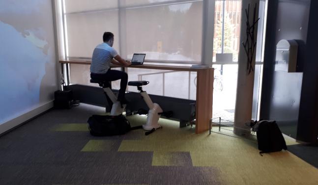 exercisestudy